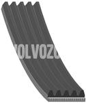 Drážkový remeň 5 valec 2.0 D3/D4, 2.4D/D5 P3 1121mm pohon servo čerpadlo - alternátor - kľukový hriadeľ